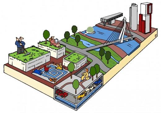 Projectontwikkelaar Rotterdam